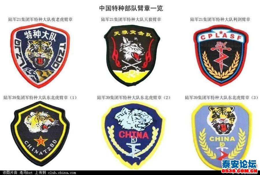 中国特种部队臂章一览