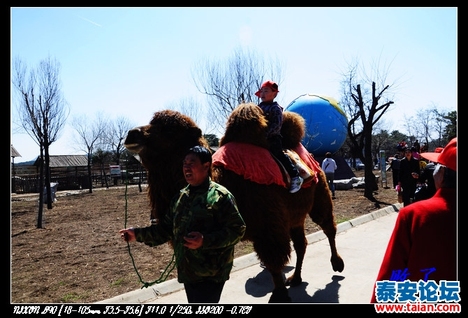4月3号自驾游济南野生动物园详记录