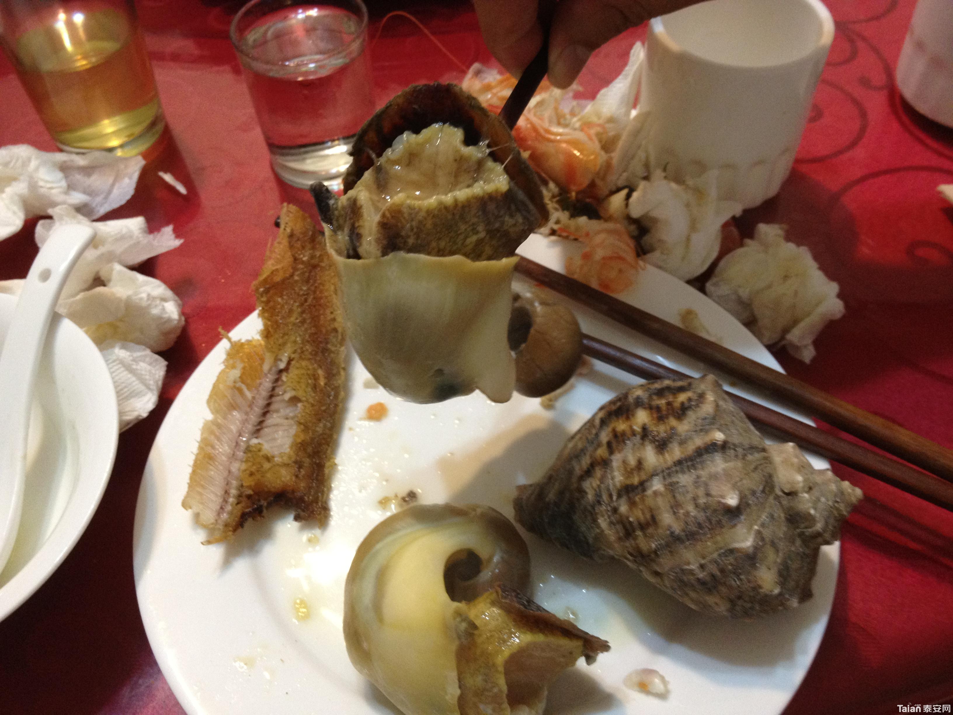 禁渔期能吃到大海螺,实属不易