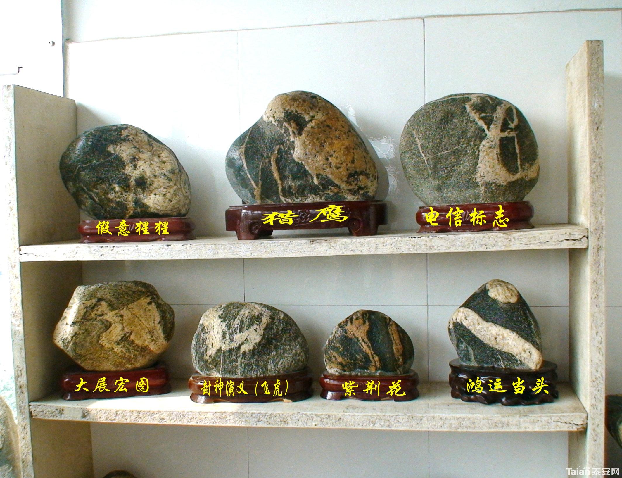 泰山动物奇石图片大全