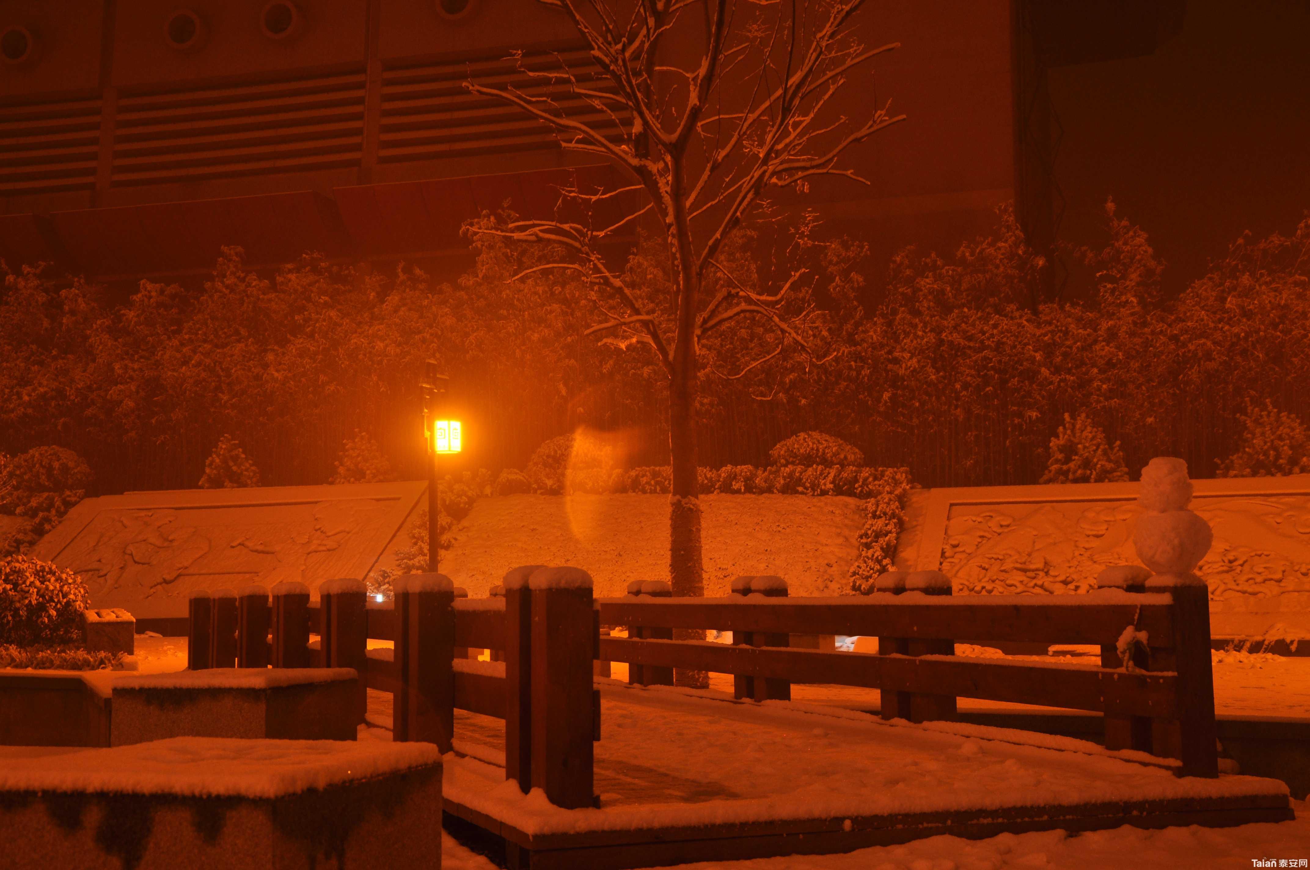 午夜风景图片大全