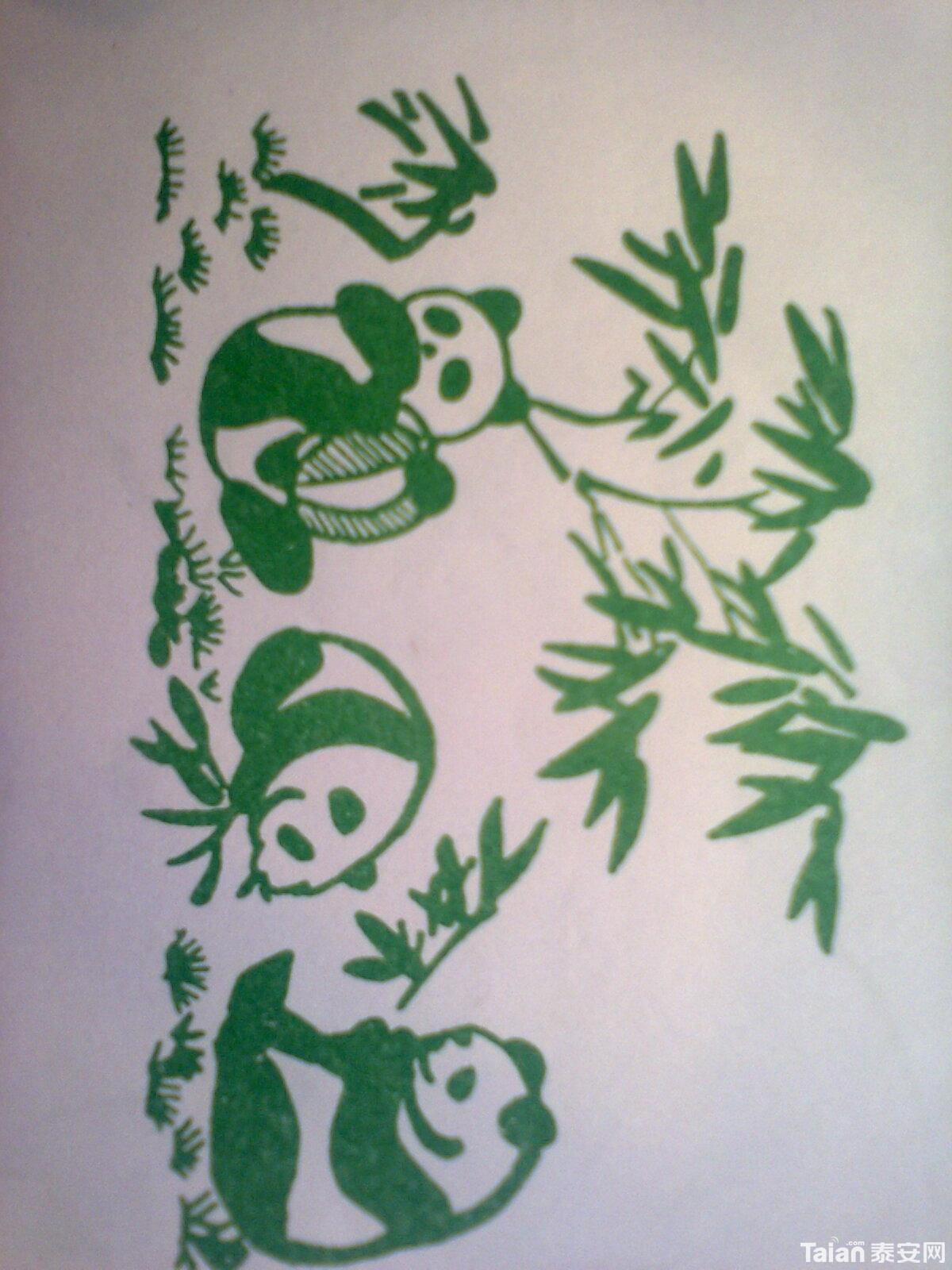 小熊猫吃竹子