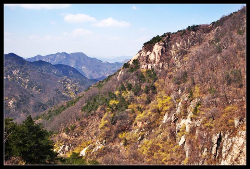 清明节泰山看风景