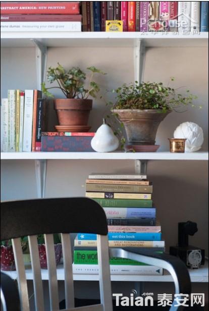 ...电了.将这些肉质植物种植在这个悬挂在点评:悬挂的植物重点: