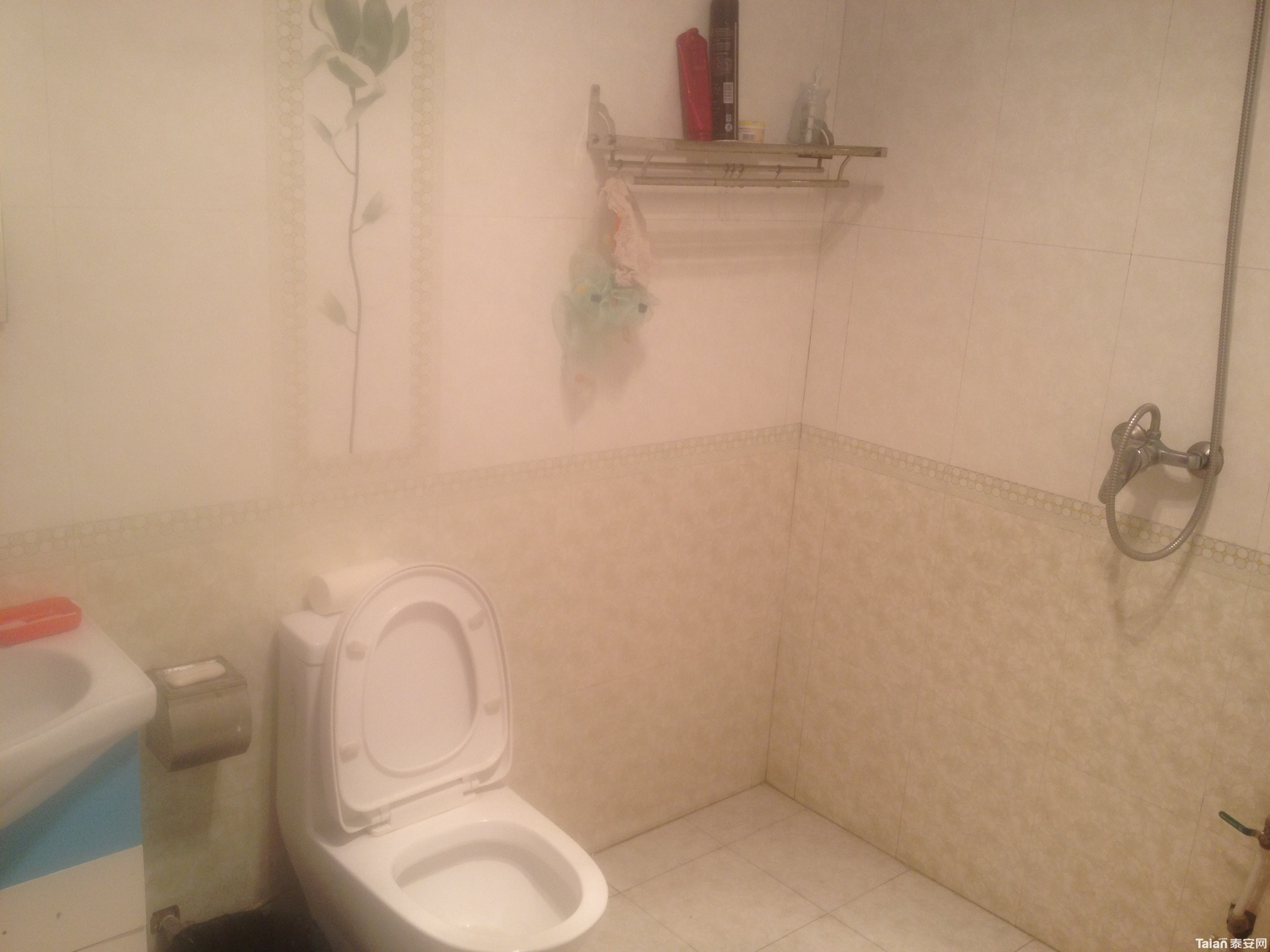 客厅双盗门装修效果图-海普凤栖湾小区2室2厅1卫精装新房 带全新家具