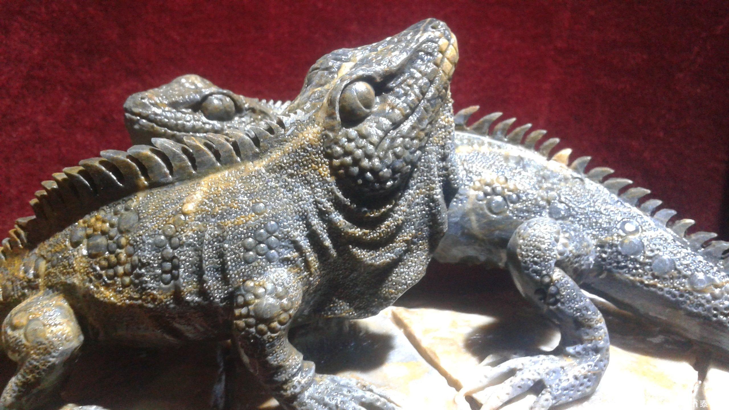 泰山石雕——蜥蜴