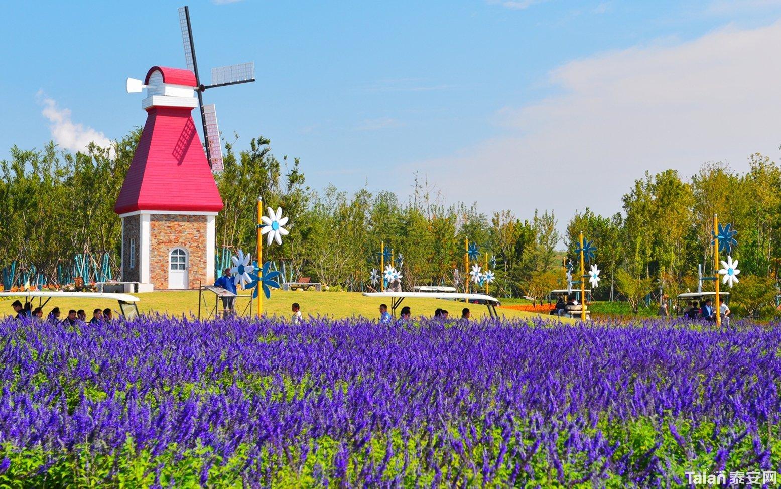 4月8号泰山天颐湖旅游度假区正式开园
