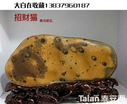 杨增超创意底座6.JPG