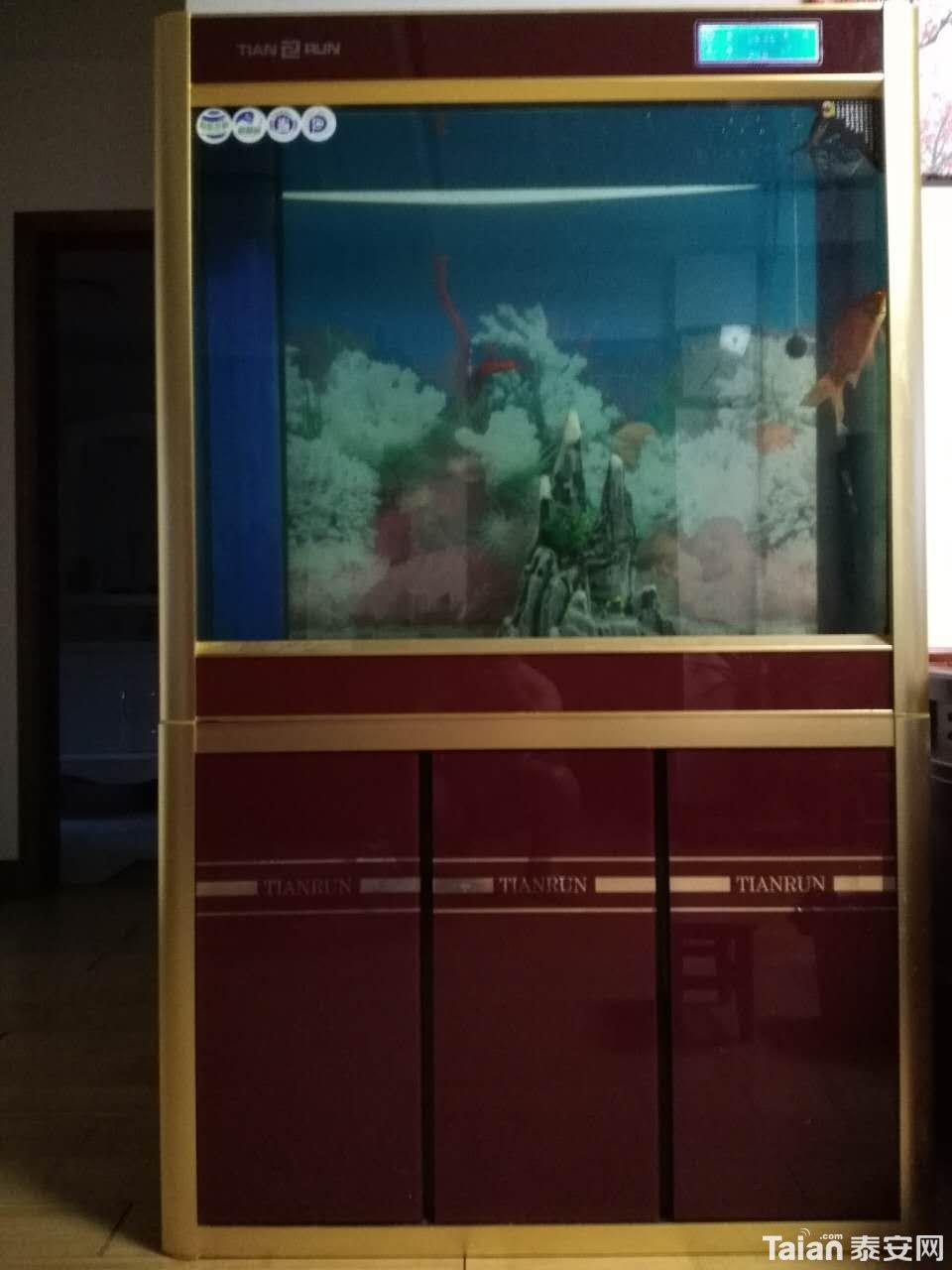 买了半年了,九成新,天润超白水族箱,长1米,宽40厘米,高160,喜欢的拿走