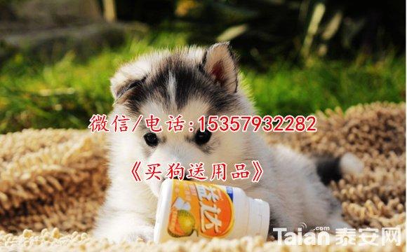 QQ截图20120803211045.jpg