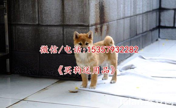 QQ截图20160810190427.jpg