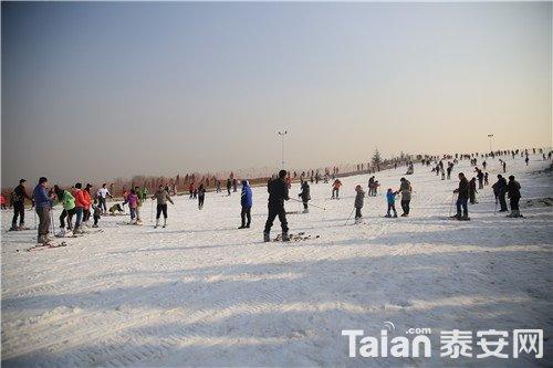 香草园滑雪 (1).jpg