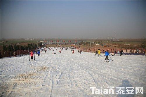 香草园滑雪.jpg