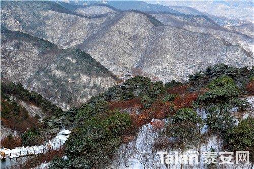 九如山 (2).jpg